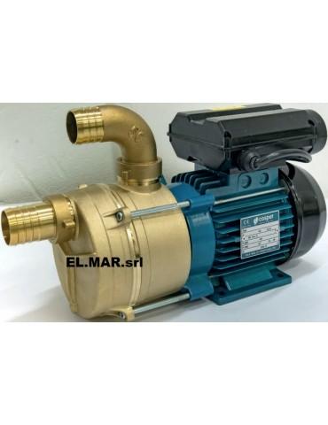 Cospet EBR25M Elettropompa 0,6 HP 230 V Autoadescante in Bronzo